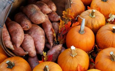Sweet Potato Pumpkins